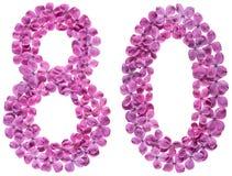 Arabische Ziffer 80, achtzig, von den Blumen der Flieder, lokalisiert auf wh Stockbilder