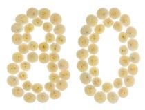 Arabische Ziffer 80, achtzig, von den Sahneblumen der Chrysantheme, Lizenzfreies Stockbild