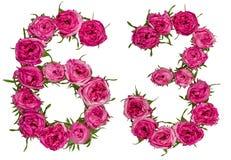 Arabische Ziffer 63, dreiundsechzig, von den roten Blumen von stieg, isolat Stockfoto