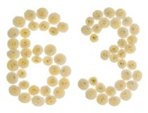 Arabische Ziffer 63, dreiundsechzig, von den Sahneblumen von chrysanthe Lizenzfreie Stockbilder
