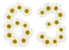 Arabische Ziffer 63, dreiundsechzig, von den weißen Blumen der Kamille, Lizenzfreies Stockfoto