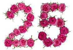 Arabische Ziffer 25, fünfundzwanzig, von den roten Blumen von stieg, isolat Lizenzfreies Stockfoto
