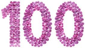 Arabische Ziffer 100, hundert, von den Blumen der Flieder, lokalisiert Lizenzfreie Stockbilder