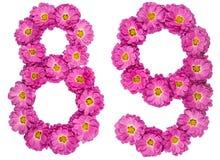Arabische Ziffer 89, neunundachzig, von den Blumen der Chrysantheme, i Lizenzfreies Stockbild