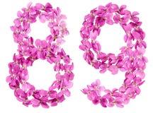 Arabische Ziffer 89, neunundachzig, von den Blumen der Viola, lokalisiert Lizenzfreies Stockbild