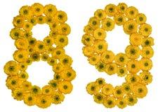 Arabische Ziffer 89, neunundachzig, von den gelben Blumen der Butterblume Lizenzfreies Stockfoto
