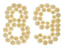 Arabische Ziffer 89, neunundachzig, von den Sahneblumen von chrysanthe Stockbild