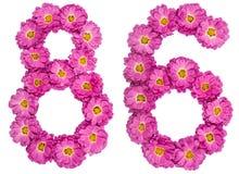 Arabische Ziffer 86, sechsundachzig, von den Blumen der Chrysantheme, ist Stockbild