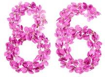 Arabische Ziffer 86, sechsundachzig, von den Blumen der Viola, lokalisierte O Stockbild