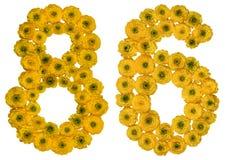 Arabische Ziffer 86, sechsundachzig, von den gelben Blumen der Butterblume, Lizenzfreies Stockbild