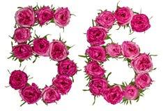 Arabische Ziffer 56, sechsundfünfzig, von den roten Blumen von stieg, lokalisiert Stockbild