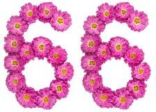 Arabische Ziffer 66, sechsundsechzig, von den Blumen der Chrysantheme, ISO Lizenzfreies Stockfoto