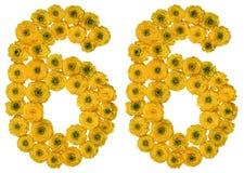 Arabische Ziffer 66, sechsundsechzig, von den gelben Blumen der Butterblume, Stockbilder