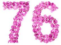 Arabische Ziffer 76, sechsundsiebzig, von den Blumen der Viola, lokalisiert Stockfotografie
