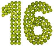 Arabische Ziffer 16, sechzehn, von den grünen Erbsen, lokalisiert auf weißem b Lizenzfreies Stockbild