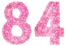 Arabische Ziffer 84, vierundachzig, vom rosa Vergissmeinnicht blüht, Lizenzfreie Stockfotografie