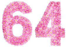 Arabische Ziffer 64, vierundsechzig, vom rosa Vergissmeinnicht blüht, Lizenzfreies Stockbild