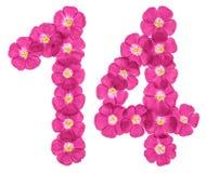 Arabische Ziffer 14, vierzehn, von den rosa Blumen des Flachses, lokalisiert auf weißem Hintergrund lizenzfreie abbildung