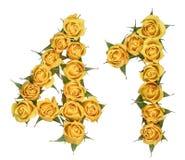 Arabische Ziffer 41, vierzig eins, von den gelben Blumen der Rose, isola stockbild
