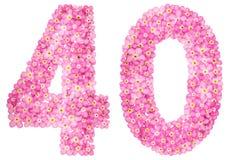 Arabische Ziffer 40, vierzig, vom rosa Vergissmeinnicht blüht, isola lizenzfreies stockbild