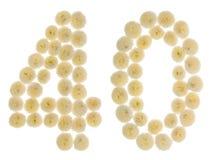 Arabische Ziffer 40, vierzig, von den Sahneblumen der Chrysantheme, i stockfoto