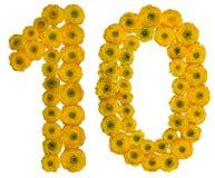 Arabische Ziffer 10, zehn, von den gelben Blumen der Butterblume, isola Stockbild