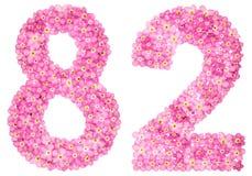 Arabische Ziffer 82, zweiundachzig, vom rosa Vergissmeinnicht blüht, Stockbilder