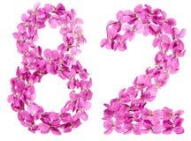 Arabische Ziffer 82, zweiundachzig, von den Blumen der Viola, lokalisierte O Stockbilder