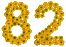 Arabische Ziffer 82, zweiundachzig, von den gelben Blumen der Butterblume, Lizenzfreie Stockbilder