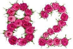 Arabische Ziffer 82, zweiundachzig, von den roten Blumen der Rose, Isolat Lizenzfreie Stockfotografie