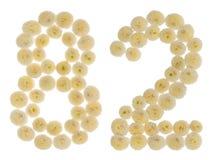 Arabische Ziffer 82, zweiundachzig, von den Sahneblumen von chrysanthem Lizenzfreies Stockfoto