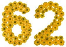 Arabische Ziffer 62, zweiundsechzig, von den gelben Blumen der Butterblume, Stockfotografie