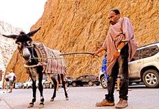 Arabischer Mann mit seinem Esel im Fluss des Todra sättigt sich in Marokko Lizenzfreie Stockfotos