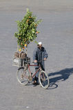 Arabischer Orangenbaumverkäufer lizenzfreie stockfotografie