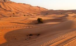 Arabisk öken, Dubai Royaltyfri Foto