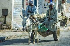 Arabiska män rider hans åsnatriumfvagn Arkivfoton