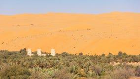 Arabiskt fort i en oas Fotografering för Bildbyråer