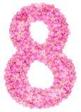 Arabiskt tal 8, åtta, från rosa förgätmigej blommar, isolat arkivfoto