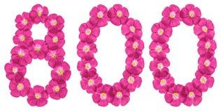 Arabiskt tal 800, åttahundra, från rosa blommor av lin som isoleras på vit bakgrund fotografering för bildbyråer