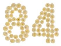 Arabiskt tal 84, åttioåfyra, från kräm- blommor av chrysanthe Royaltyfri Fotografi