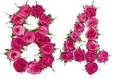 Arabiskt tal 84, åttioåfyra, från röda blommor av steg, isolat Fotografering för Bildbyråer