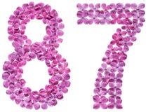 Arabiskt tal 87, åttiosju, från blommor av lilan som isoleras Fotografering för Bildbyråer