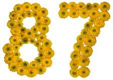 Arabiskt tal 87, åttiosju, från gula blommor av buttercuen Royaltyfri Foto
