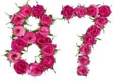 Arabiskt tal 87, åttiosju, från röda blommor av steg, isolaen Royaltyfria Bilder