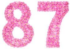 Arabiskt tal 87, åttiosju, från rosa förgätmigej blommar Arkivbild