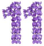 Arabiskt tal 11, elva, från blommor av altfiolen som isoleras på wh Royaltyfria Foton