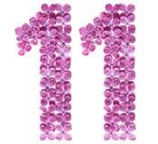 Arabiskt tal 11, elva, från blommor av lilan som isoleras på wh Royaltyfri Bild