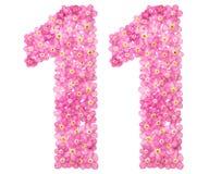 Arabiskt tal 11, elva, från rosa förgätmigej blommar, isolator Fotografering för Bildbyråer