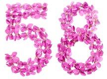 Arabiskt tal 58, femtioåtta, från blommor av altfiolen som isoleras Royaltyfria Foton