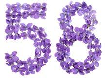 Arabiskt tal 58, femtioåtta, från blommor av altfiolen som isoleras Arkivbilder